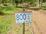 Dc090911